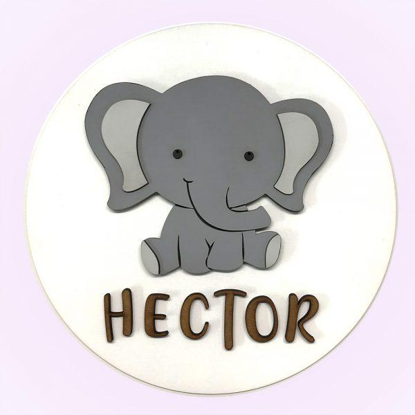 elefante_frent_opt